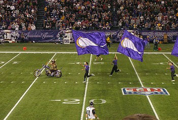 Green Bay Packers vs Minnesota Vikings Premium Pick 11/23/2014 - 11/23/2014 Free NFL Pick Against the Spread
